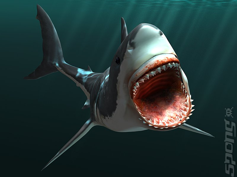 Jaws Unleashed For Pc